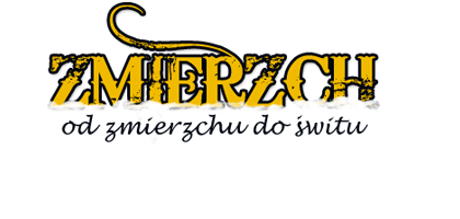 Zmierzch – Noclegi w Lublinie